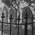 Kirkdale Churchyard