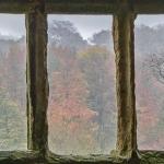 Helmsley Castle Window